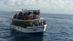 Crowd at a whale watching boat Stock Footage