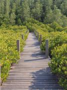 wooden board walk path leading to destination - stock photo