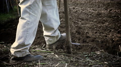 Old and poor European farmer tills a plot of land with rudimentary tools: spade Stock Footage
