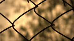 close up of wire mesh with tree's branches on background at sunset - stock footage