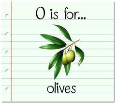 Flashcard letter O is for olives - stock illustration