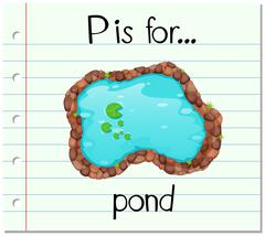 Flashcard letter P is for pond - stock illustration