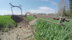 Old plow in the field, time lapse 4K Stock Footage
