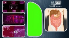 Digestion - Computer Scanning - Human detector - World - pink 03 Stock Footage