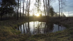 Spring sun rising above pond, time lapse 4K Stock Footage