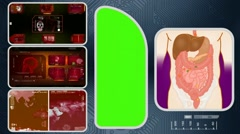Digestion - Computer Scanning - Human detector - World - red 02 - stock footage
