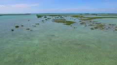 Florida Keys reef habitat aerial video Stock Footage
