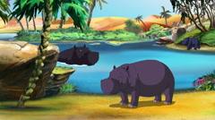 African Hippopotamus Stock Footage
