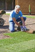 Landscape Gardener Laying Turf For New Lawn Stock Photos
