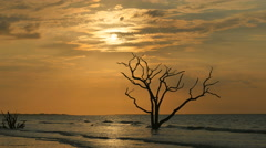 4K Edisto Island Beach Sunrise Stock Footage