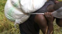 Porter Ascending Mount Kilimanjar Stock Footage
