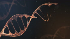 Background the formation of the 3D rendering element of the structure of DNA. Stock Footage