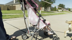 mom with her toddler in a stroller walking the dog in a suburban street 4k - stock footage