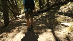 A man with a camera hiking in the woods Stock Footage