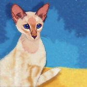 Oriental Shorthair Cat Illustration - stock illustration