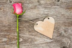 Blank heart shaped tag and single rose - stock photo