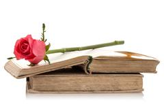 Old books with pink rose. - stock photo