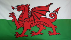 Slowmotion real textile Flag of Wales Stock Footage