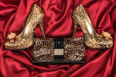 Leopard shoes and purse lying on the red satin Stock Photos