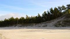 White sand dunes of Leba, Poland Stock Footage