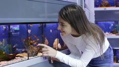 girl looking at tropical fish in aquarium - stock footage