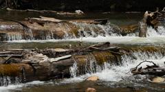 Waterfall over fallen trees mountain creek ultra slow motion HD Stock Footage
