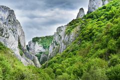 Monumental limestone gorge. Cheile Turzii, Romania Stock Photos
