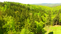 Aerial view of beautiful forest and green meadows Stock Footage
