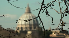 View of St. Peter's Dome in Rome through the branches of a tree: change of focus Stock Footage