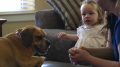 Toddler playing with mom and their dog at home Stock Footage