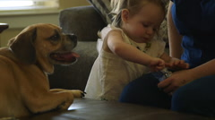 Mom at home with her toddler and dog eating snacks Stock Footage