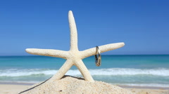 Love wedding concept Engagement ring and starfish on tropical beach Oahu - stock footage