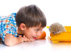 Boy with Hedgehog - stock photo
