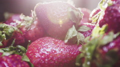 Fresh strawberries ready to eat in the morning sun Stock Footage