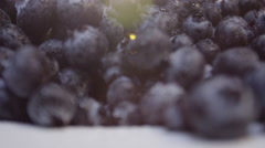closeup panning shot of farm fresh blueberries ready to serve - stock footage