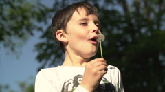 Young Boy Blowing Dandelion Stock Footage