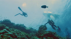 UHD wide shot of scuba divers at reef, rubber boat on surface, Red Sea Stock Footage