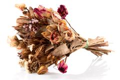Decoration of dried flowers - roses Stock Photos