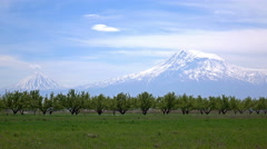 Timelapse of the Ararat mountain, symbol of Armenia, with trees in front Stock Footage