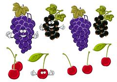 Cartoon grapes, cherries, black currants fruits - stock illustration