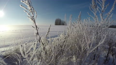 Frosted landscape on sunny winter day, time lapse 4K Stock Footage