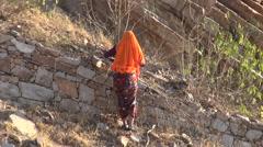 Jaipur, Rajasthan, India, December 2012  - woman wearing sari cutting branches Stock Footage