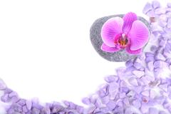 Salt, stone and orchid - stock photo