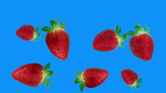 strawberries falling loop blue screen - stock footage