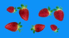 strawberries spinning loop blue screen - stock footage