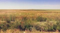 Eastern European Hot Summer Fields Motion Backgrounds Vehicle Shot Stock Footage