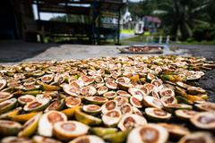 Betel nuts being sold in Pulua Weh, Sumatra, Indonesia, Southeast Asia - stock photo