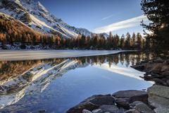 Colourful woods are reflected in Saoseo Lake still partially frozen, Poschiavo Stock Photos