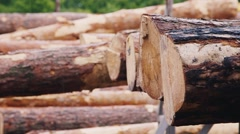 Raindrops are falling on a pile of building timber Stock Footage