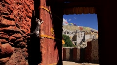 Cat trying to climbing down the door of a monastery, Mustang, Nepal Stock Footage
